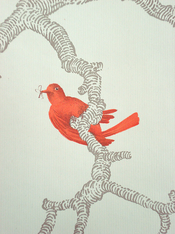 Orange Birds, 2004